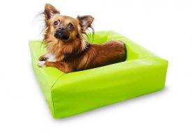 Bia Bed lime